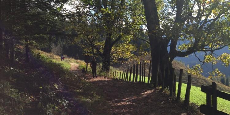 Soleleitungsweg Ramsau Berchtesgadener Land - 16