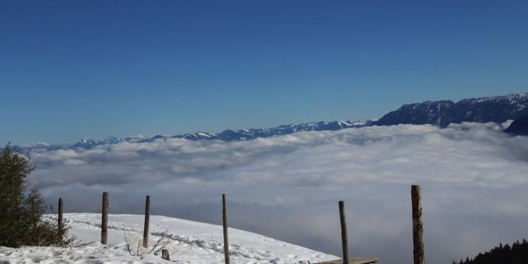 Stoißer Alm Anger Berchtesgadener Land - 15