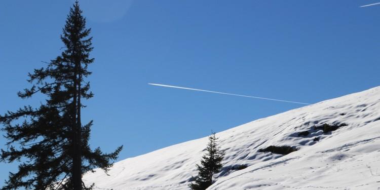 Stoißer Alm Anger Berchtesgadener Land - 8