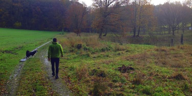 Trail Running Jogging Emmelshausen Hunsrueck - 12
