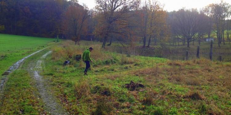 Trail Running Jogging Emmelshausen Hunsrueck - 13