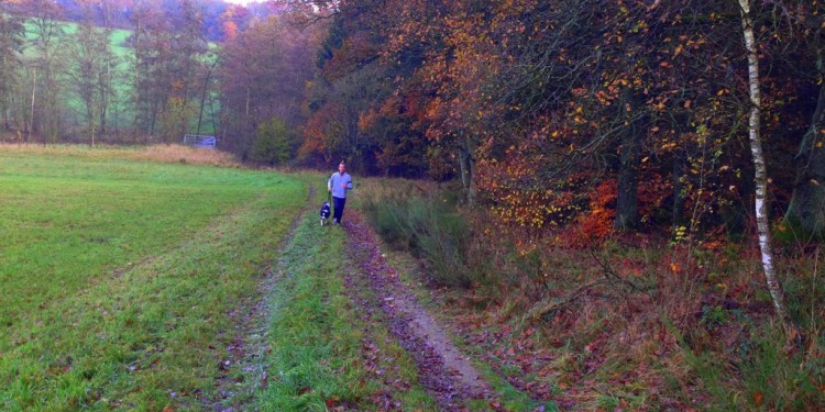 Trail Running Jogging Emmelshausen Hunsrueck - 15