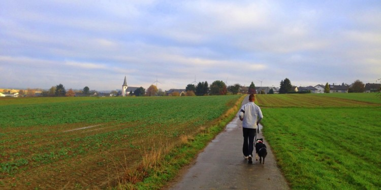 Trail Running Jogging Emmelshausen Hunsrueck - 4
