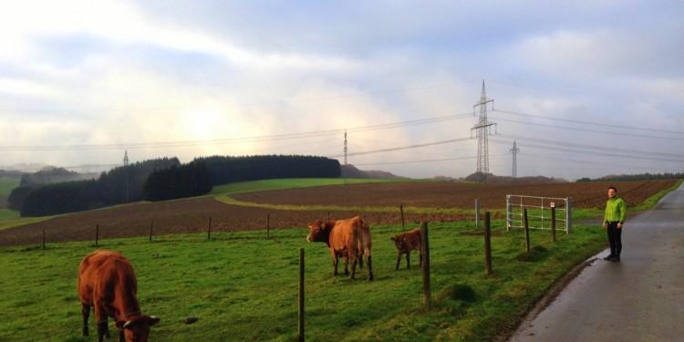 Trail Running Jogging Emmelshausen Hunsrueck - 6