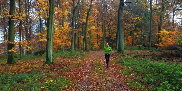 Trail Running Jogging Emmelshausen Hunsrueck - 9