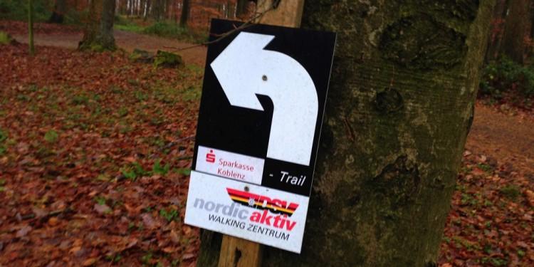 Trail running Stadtwald Koblenz Remstecken - 5