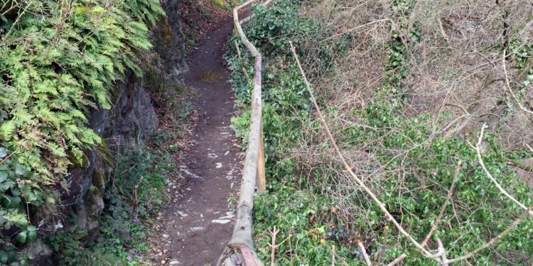 Ahrtal Rotweinwanderweg Mosesquelle