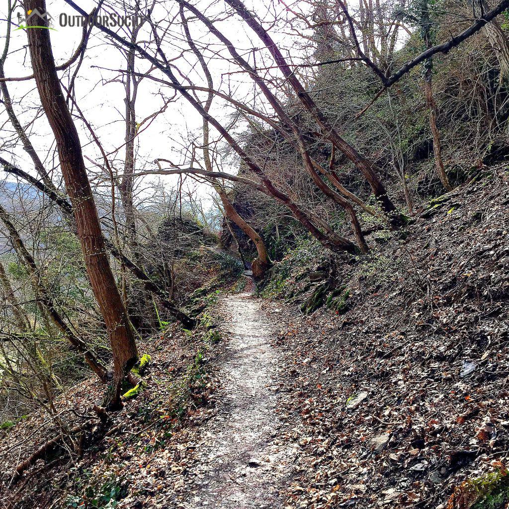 Rotweinwanderweg Ahrtal Dernau Rech - 01