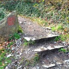 Rotweinwanderweg Ahrtal Dernau Rech - 02