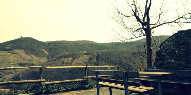 Rotweinwanderweg Ahrtal Dernau Rech - 05