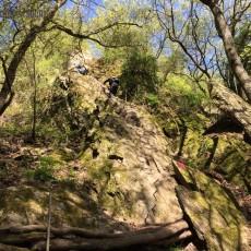 Mittelrhein Klettersteig Boppard Rhein Kletter Kurs - 28