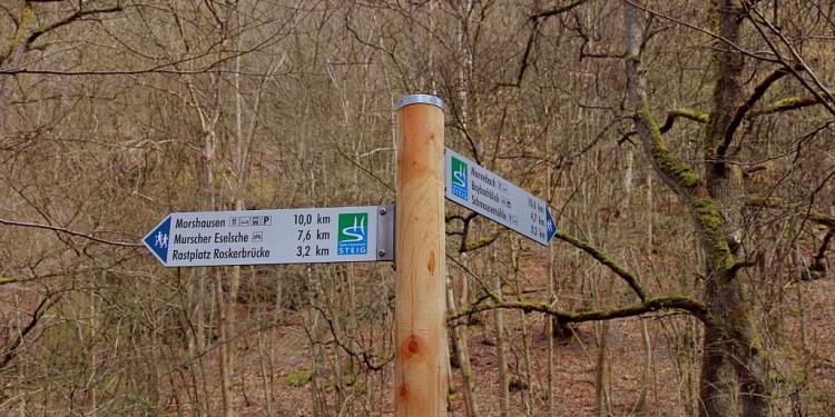 Saar-Hunsrück-Steig Verlängerung - 11