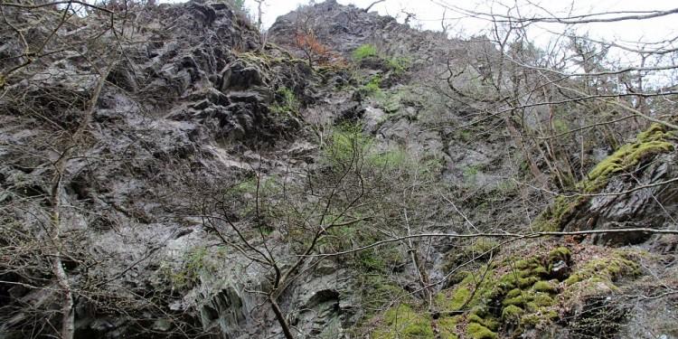 Saar-Hunsrück-Steig Verlängerung - 14