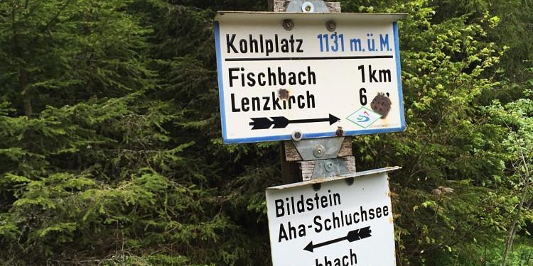 Bildstein Jaegersteig Schluchsee Schluchtensteig Schwarzwald - 20