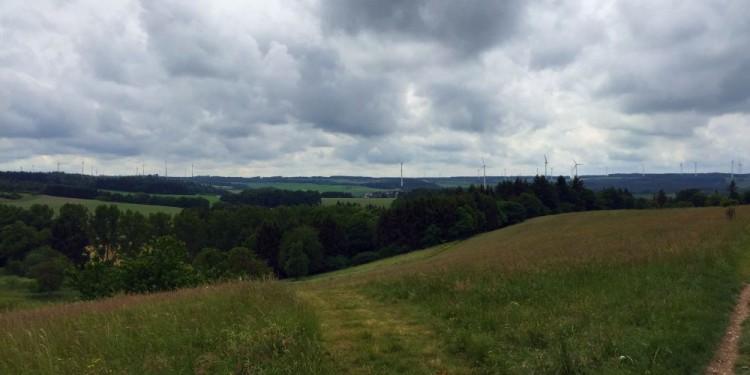 Dielaysteig Saar-Hunsrück-Steig35-20150601
