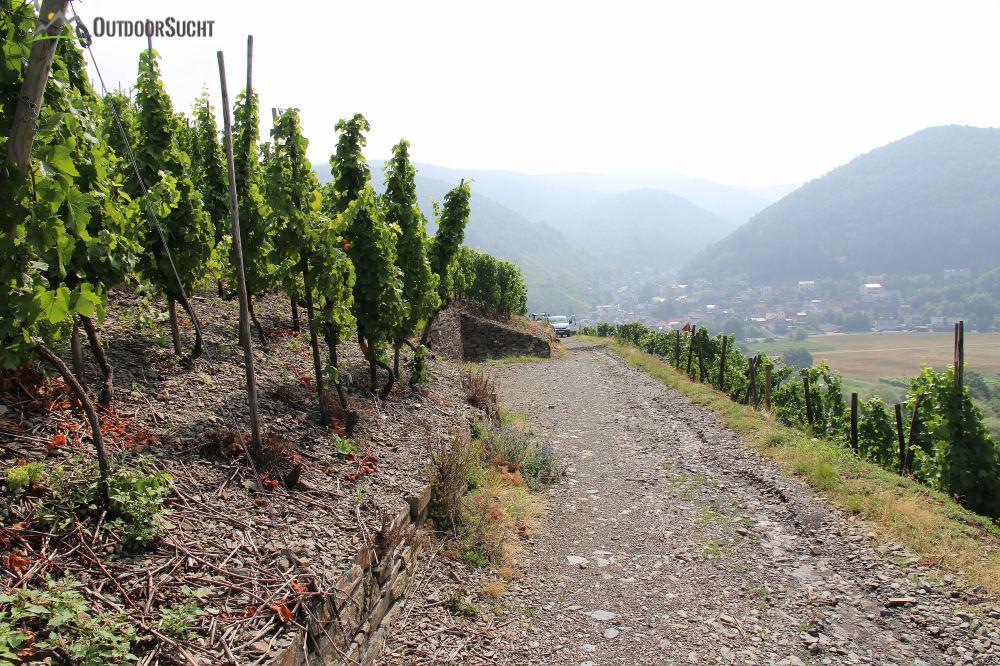 Rotweinwanderweg Altenahr - IMG_8200