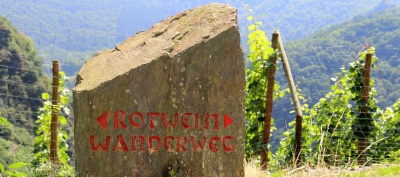 Rotweinwanderweg Altenahr - IMG_8256