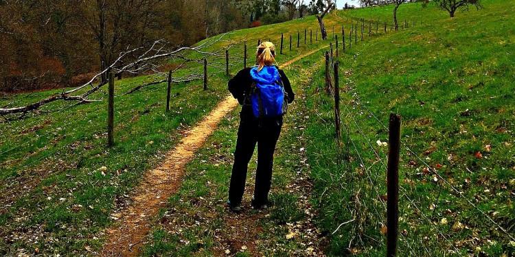 Moselsteig Etappe 4 Konz Trier