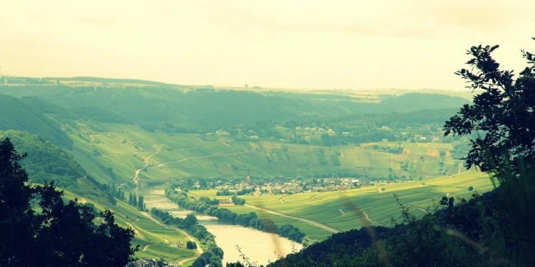 Moselsteig Etappe 9 Neumagen Osann-Monzel Kesten - 07