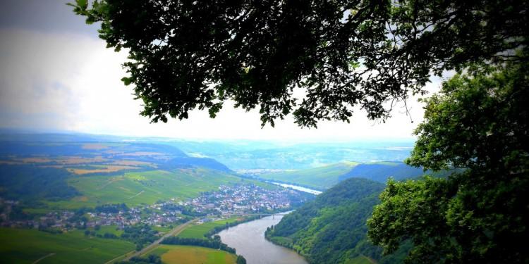 Moselsteig Etappe 9 Neumagen Osann-Monzel Kesten - 27