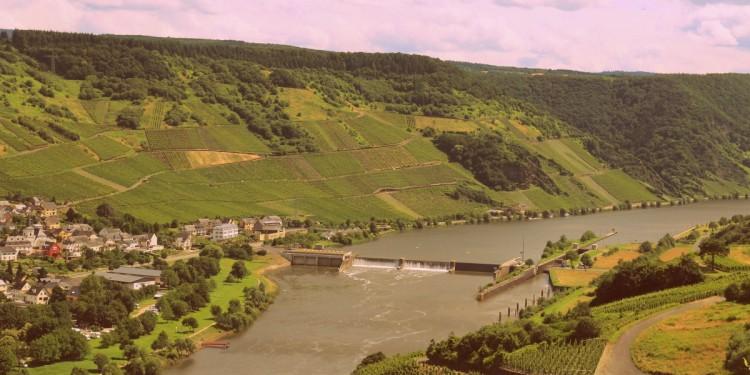 Moselsteig Etappe 9 Neumagen Osann-Monzel Kesten - 32