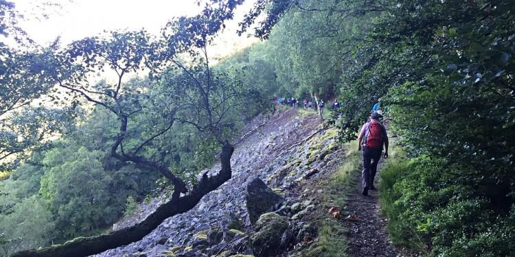 Wandermarathon Saar-Hunsrueck-Steig 2016 - 15