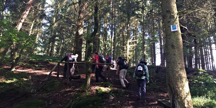 Wandermarathon Saar-Hunsrueck-Steig 2016 - 27