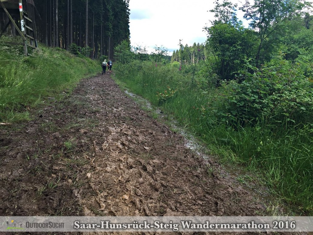 Wandermarathon Saar-Hunsrueck-Steig 2016 - 35