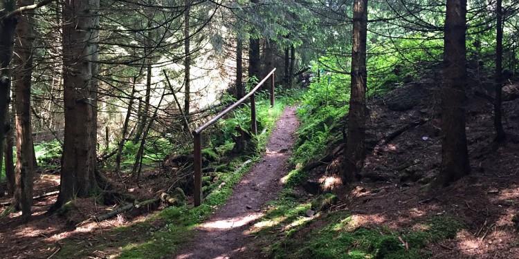 Wandermarathon Saar-Hunsrueck-Steig 2016 - 36