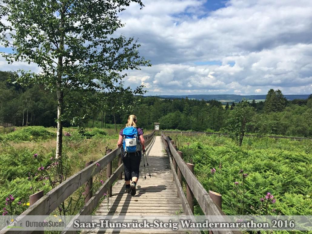 Wandermarathon Saar-Hunsrueck-Steig 2016 - 37