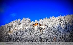 Blick hinauf zur Berghütte Adlerhorst.