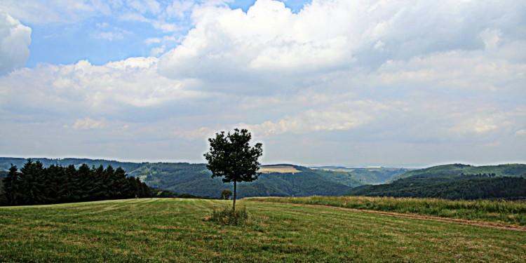 Traumschleife Murscher Eselsche Saar-Hunsrück-Steig