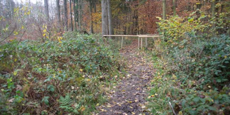 Traumschleife Burgstadt