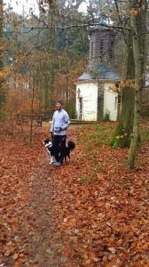 Trail Emmelshausen Jogging - 1