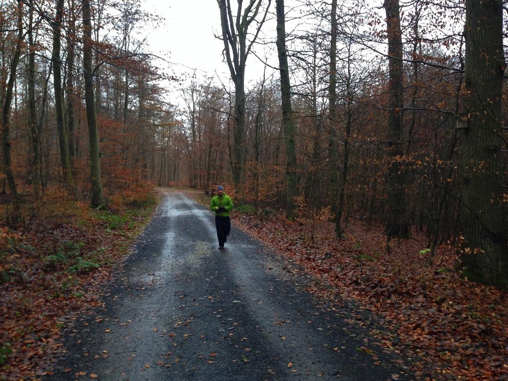 Trail running Stadtwald Koblenz Remstecken - 4