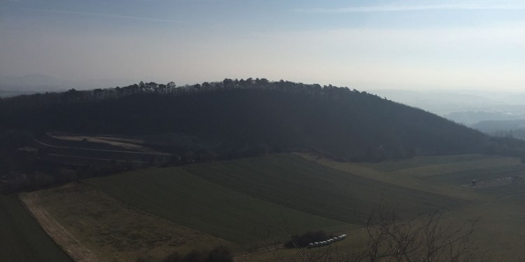 Ausblick Ettringer Bellberg