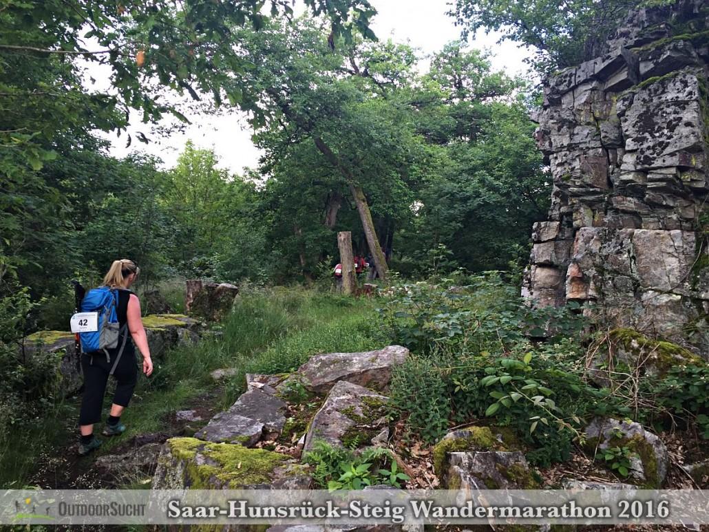 Wandermarathon Saar-Hunsrueck-Steig 2016 - 25