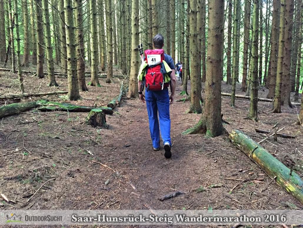Wandermarathon Saar-Hunsrueck-Steig 2016 - 30