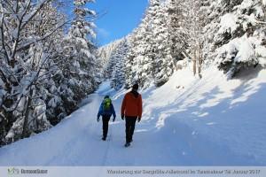 Aufstieg von Haldensee zur Berghütte Adlerhorst.
